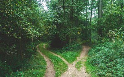 Zašto su odluke osnova našeg duhovnog puta?